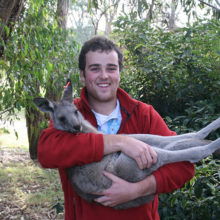Kangaroo Management And Research 2